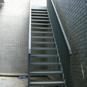 Steel Structure Ladder/ Steel Stair (SSWS 003)